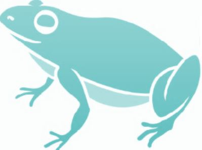 Cleverfrog Website Design